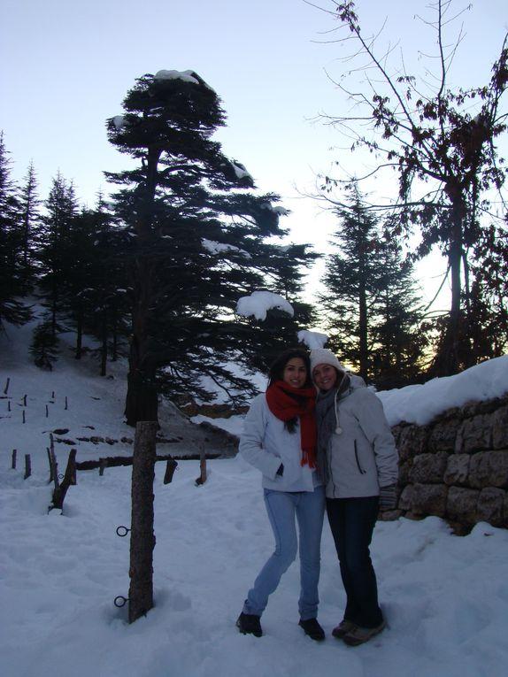 une semaine de vadrouille au Liban pendant les vacances de Noël