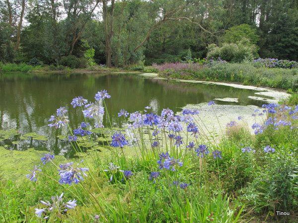 Album - Chateaux-et-jardins