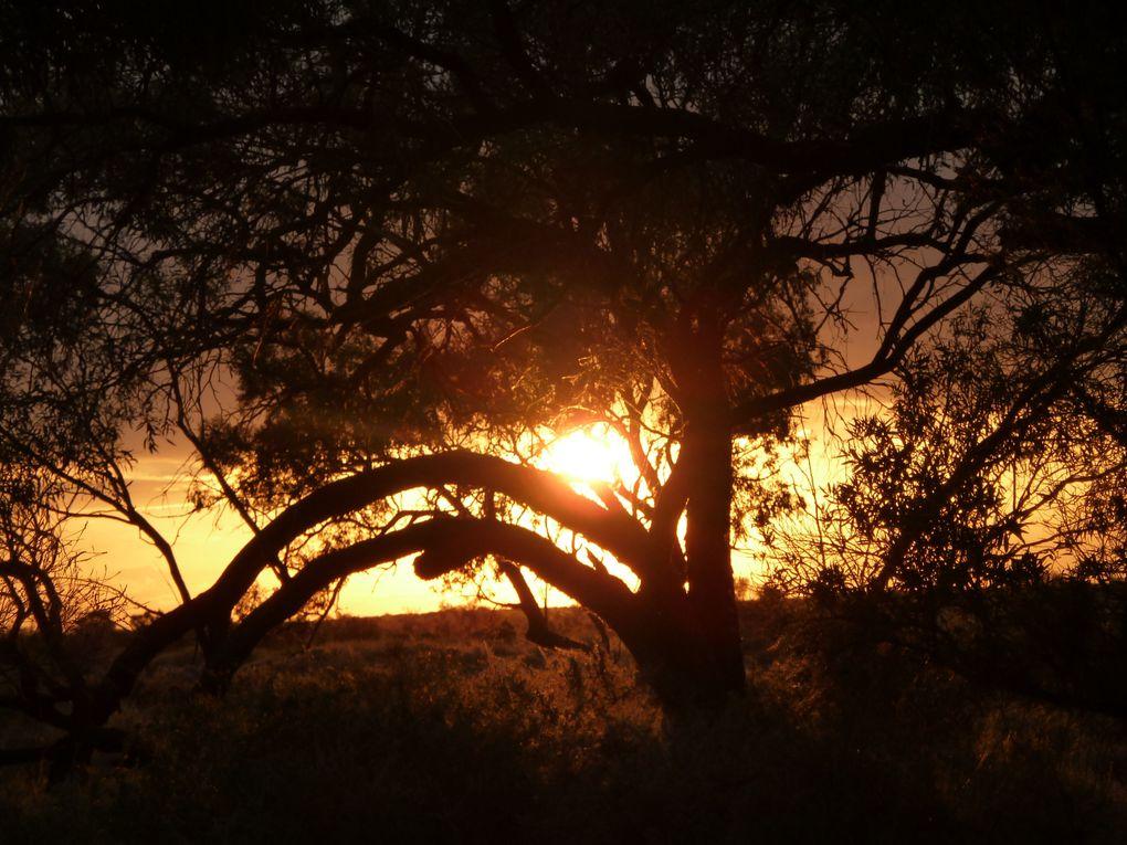 Menindee, Mutawuntji,Broken Hill, Silverton