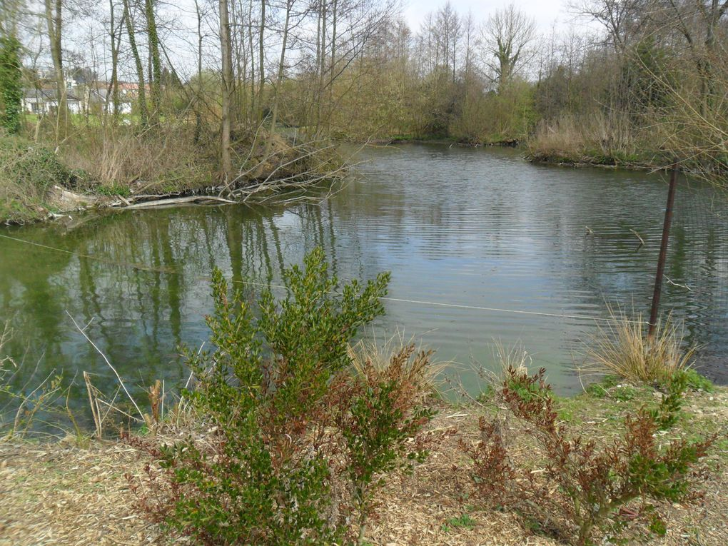 Album - ma-region  pres d  Arras  30/03/2012