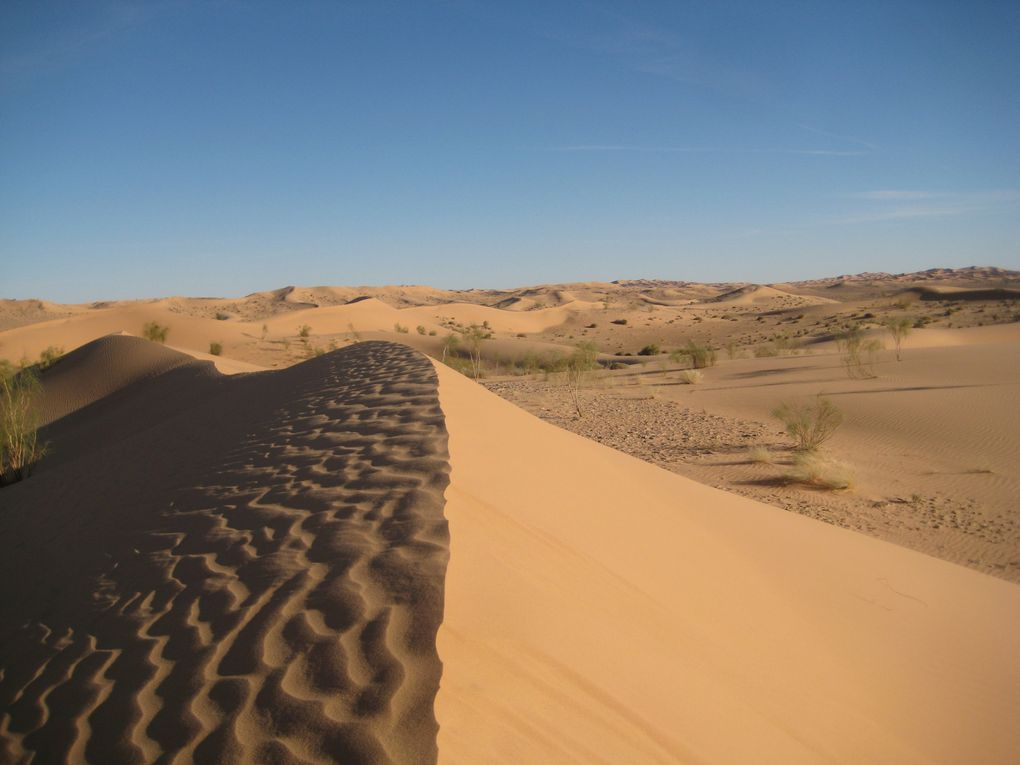 Album : ALGERIE-Grd-Erg-Occidental