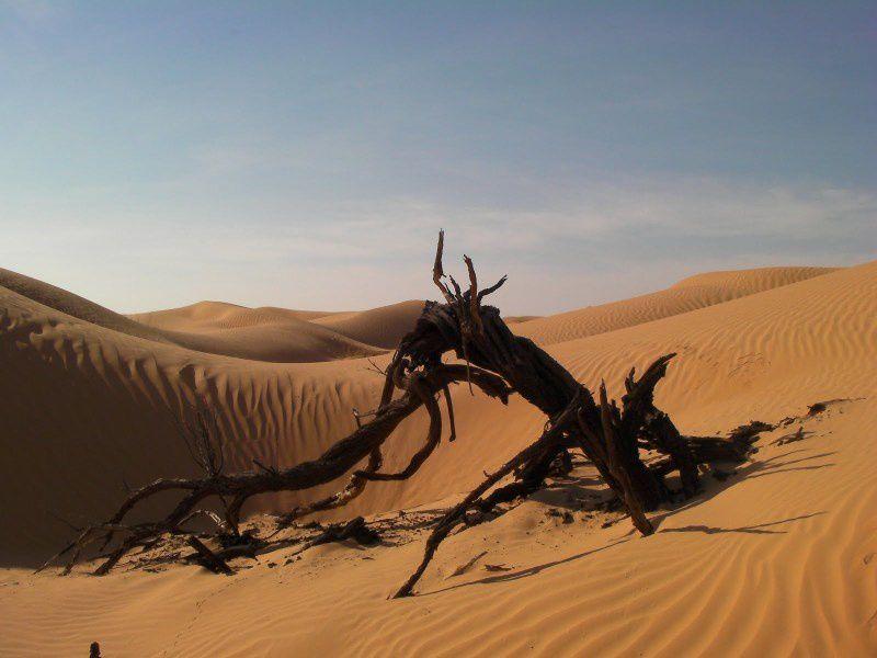 Album : TUNISIE 2012 Raid-EL-MIDA