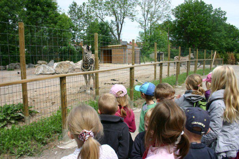 Album - zoo-d-Amiens
