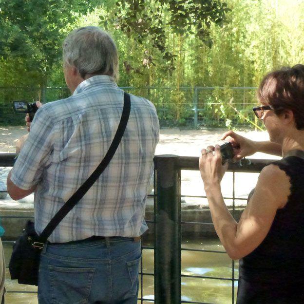 Les photographieurs au zoo de La Palmyre (17)