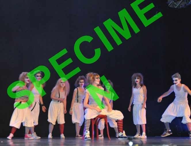 Photos réalisées par Bernard Simon, à l'occasion du spectacle de fin d'année de l'association New Danse Studio.