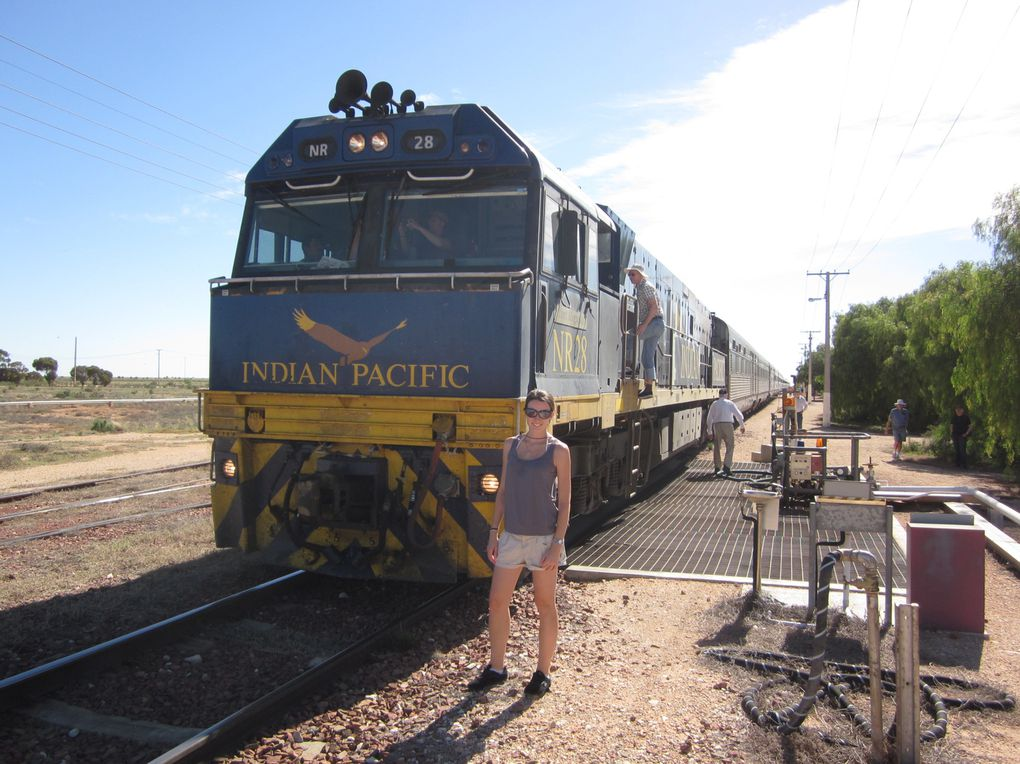 Album - Indian-Pacific