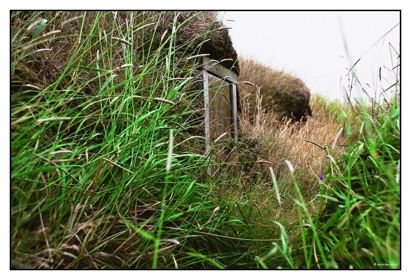Photos prises en Août 2009 présentées dans l'ordre chronologique de prise de vue