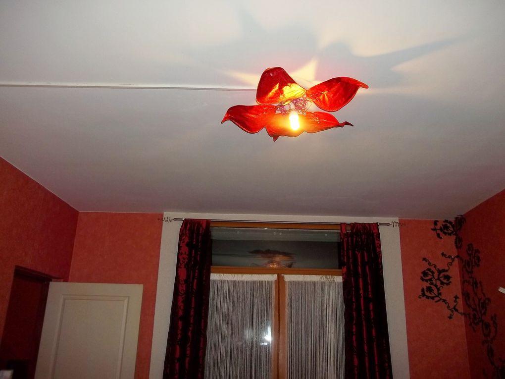 Vous voulez mettre un peu de magie chez vous?Je peux vous créer une jolie fleur qui illuminera votre maison de sa douce lumière enchanteresse. Je peux vous la décliner en lampe, applique et plafonnier.