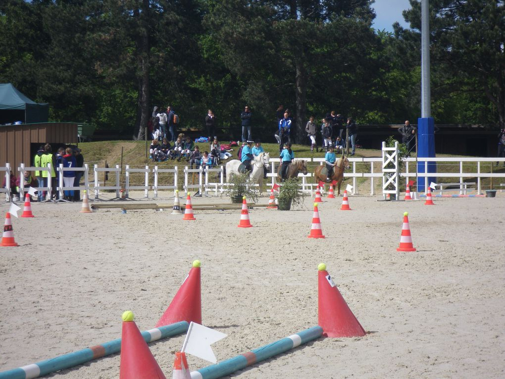 Album - Championnat-de-France-equitation-2013
