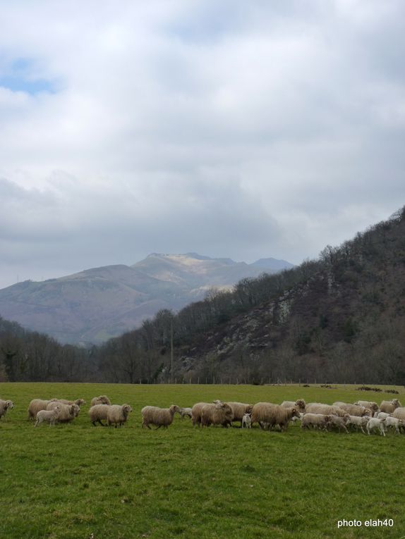 pays-basque .randonnée 18km200 et 890m de dénivelé .beau temps .