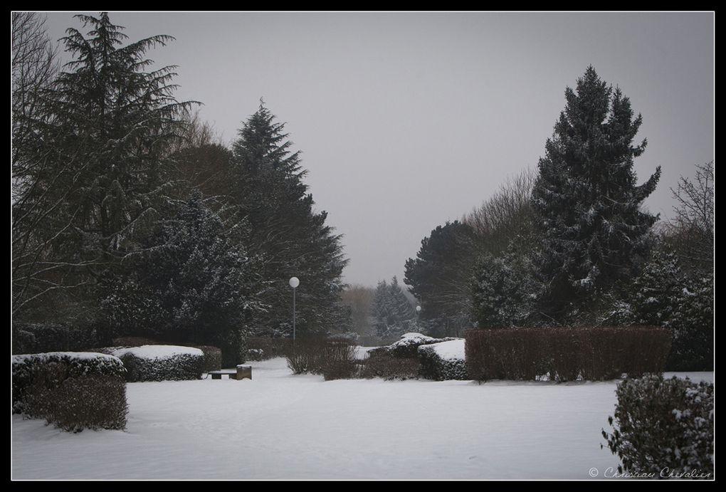 Album - Florilege en neige