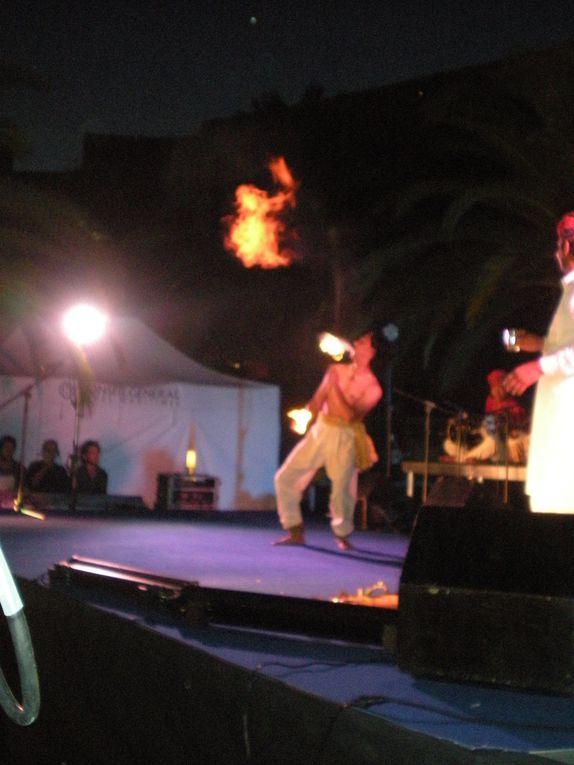 Photos du spectacle de DHOAD,les gitans du Rajasthan sur le parvis du musée des arts asiatiques de NICE dans le cadre des soirées estivales de la ville,le 17 Juillet 2012.