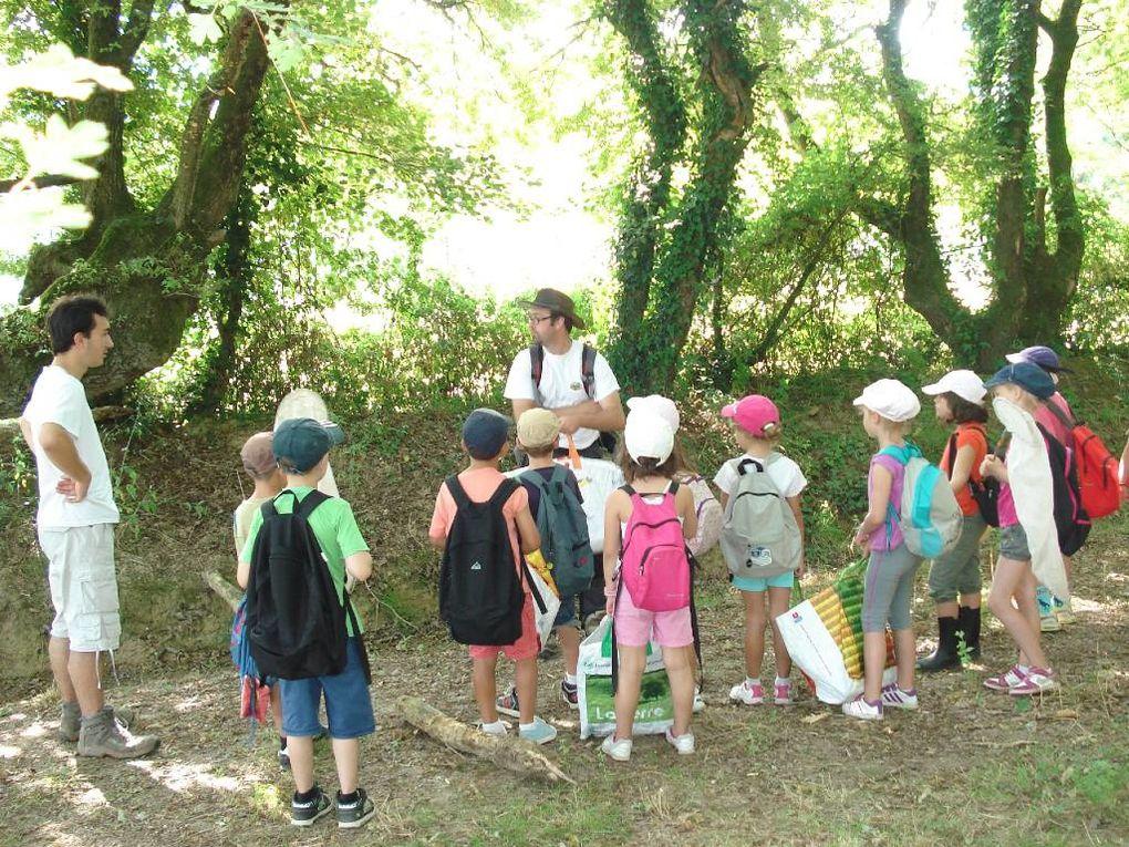 Séjour du 15 au 18 juillet au camping de la Forêt à Aizenay avec La Cicadelle.Grosses chaleurs tous les jours !!!