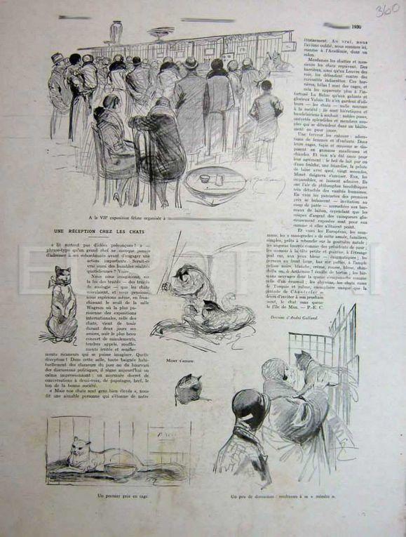 Articles  et pages de vieilles revues (françaises en anglaises)