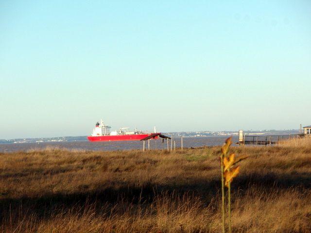 De Bordeaux au Texas, des ports de l'Estuaire à l' Arizona, en passant par Libourne et le Gers