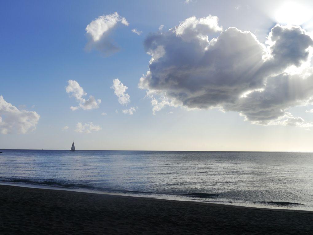 Album - Martinique 2012