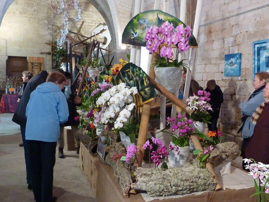 Album - Abbaye-de-Vaucelles