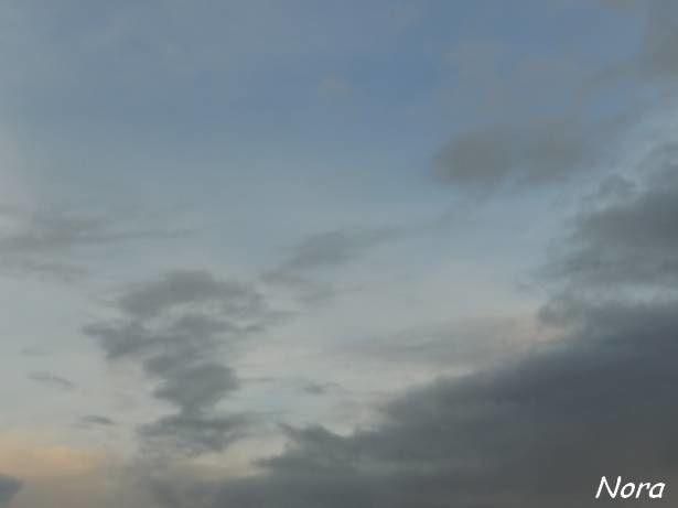 Album - Cote-ciel