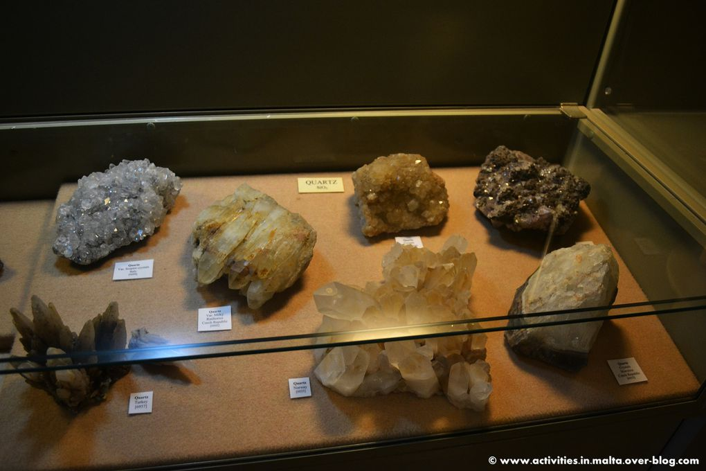 Album - National-Museum-of-Natural-History