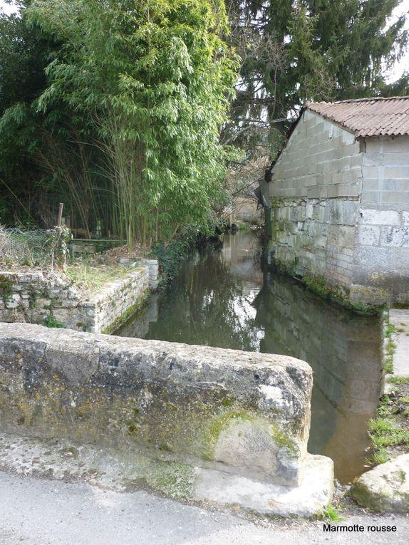 Album - Au-fil-de-la-Charente