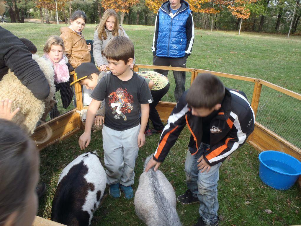 thème pendant ces vacances de Toussaint les animaux de la ferme.