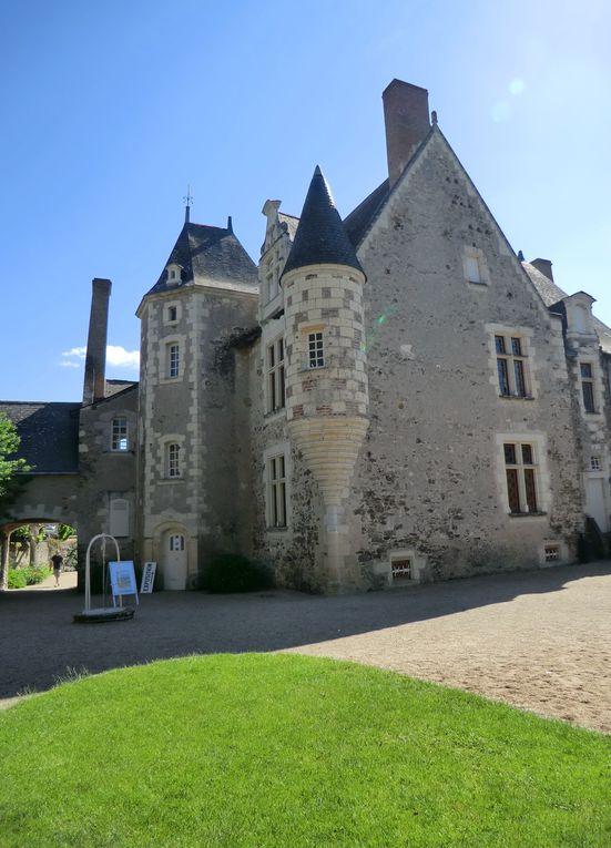 Lors de la journée de la peinture,le layon peint sa toile architecturale vers l'église et aussi vers la promenade du Layon où des artistes y peignent Saint-Aubin de Luigné sous différentes couleurs.