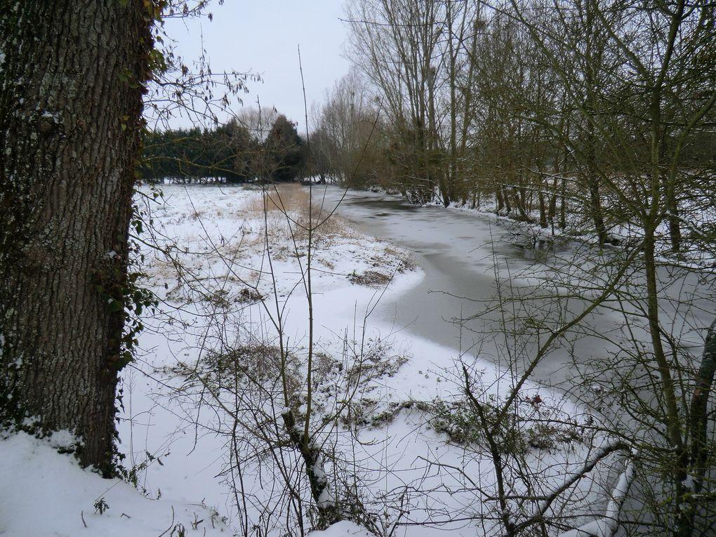 Le fait que l'entrée du par de la garenne est fermée par sécurité donc l'Angevine suit le parcours vers la rive droite où on rejoind la deuxième passerelle,l'Angevine admire la mer de glace et cherche de la végétation...