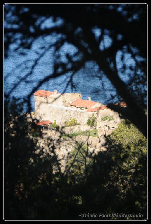 La joie partagée lors de cette rencontre, même hors de l'eau.Déclic Bleu Méditerranée au parc national de Port Cros.