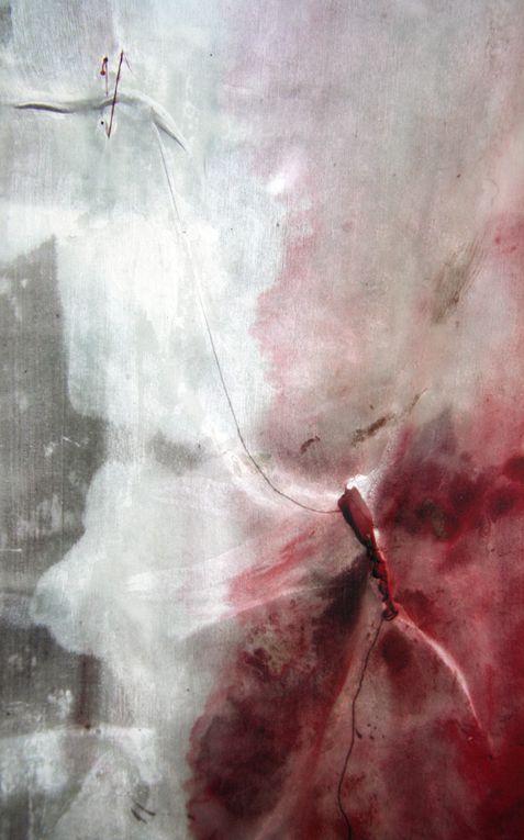 Voiles de soie peints et cousus, photographiés puis repeints avant d'être transférés sur miroir.