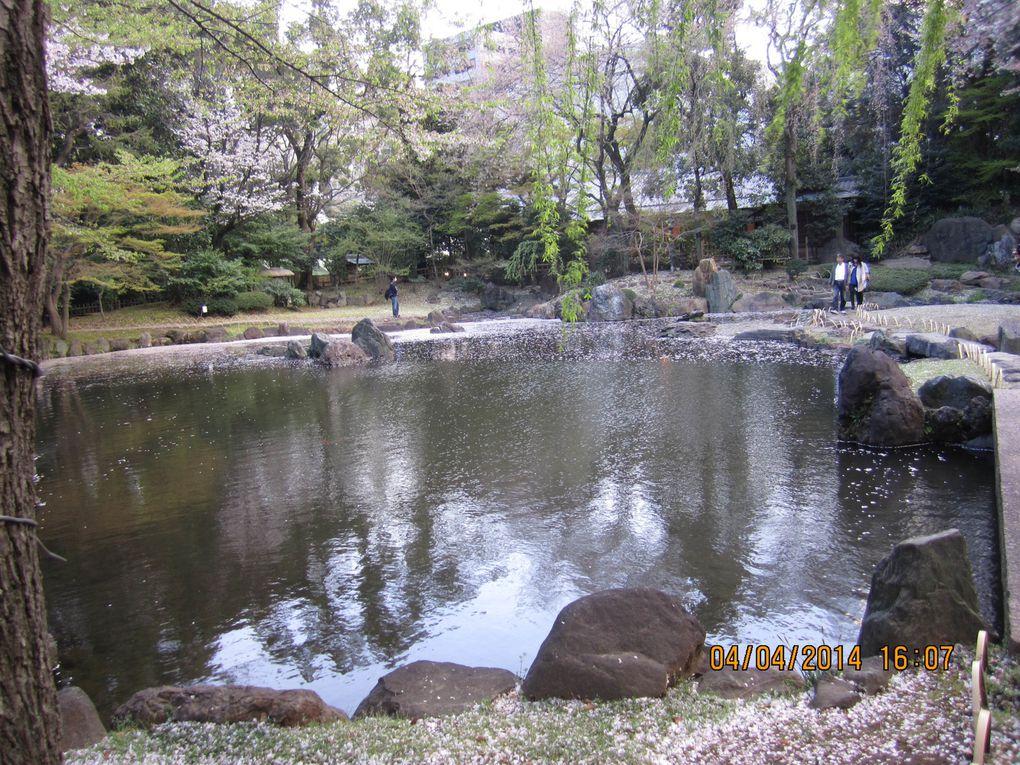 Album - Japon_1