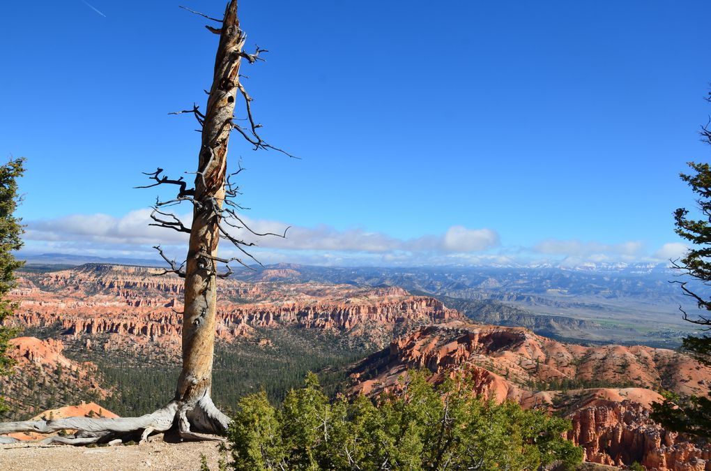Album - 26 Bryce Canyon