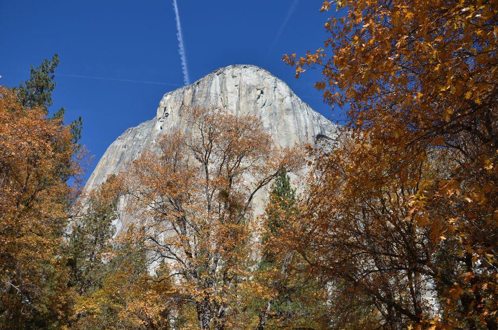 Album - 35 Yosemite