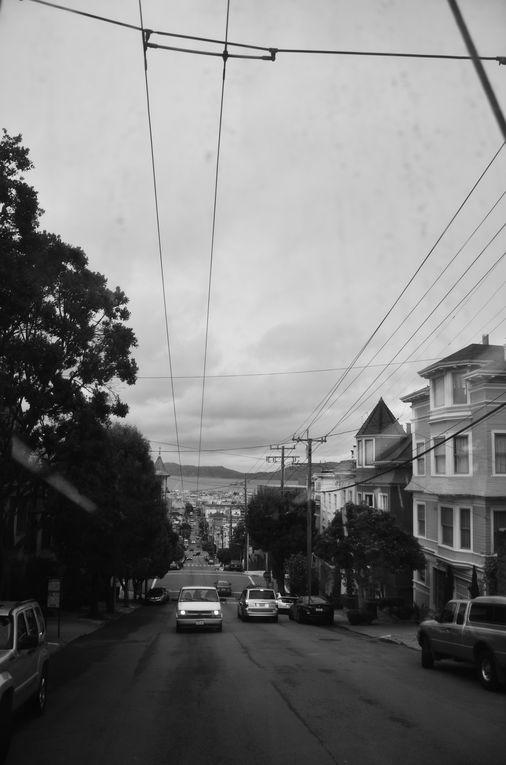 Album - 36 San Fransisco
