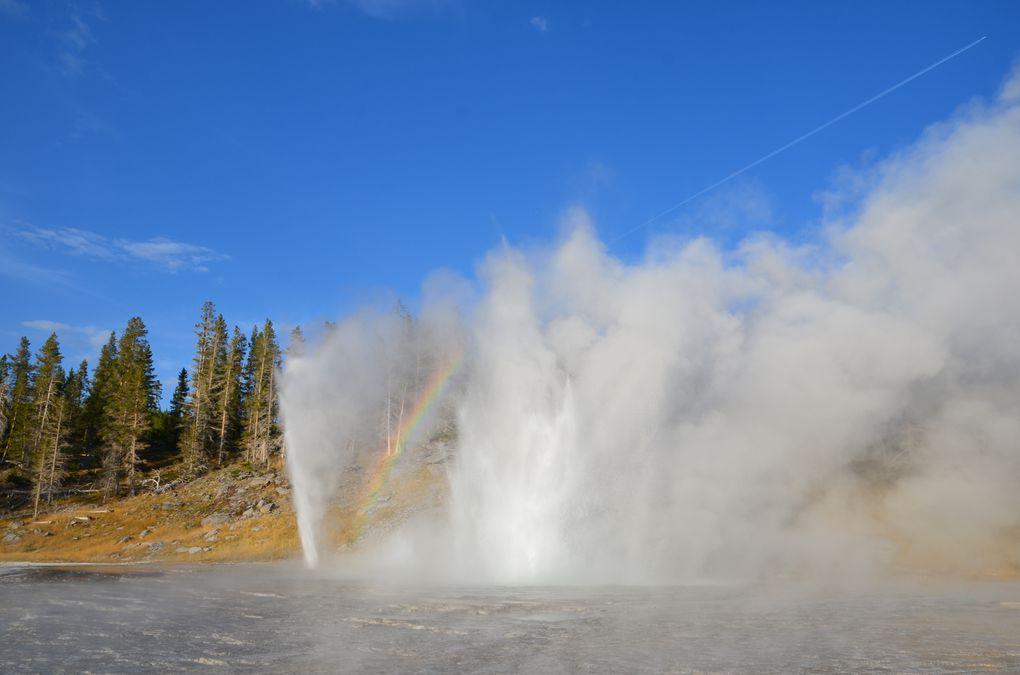 Album - 20 Yellowstone
