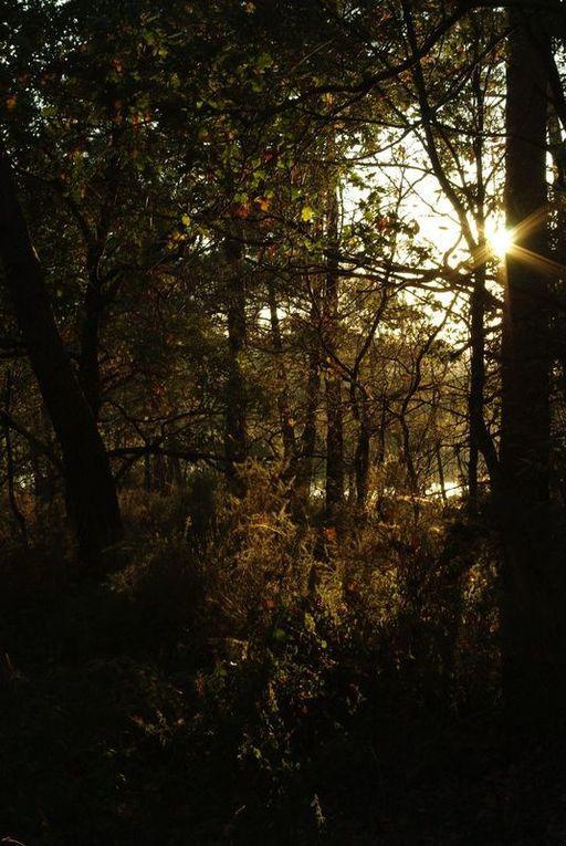 Quelques photos de paysages...