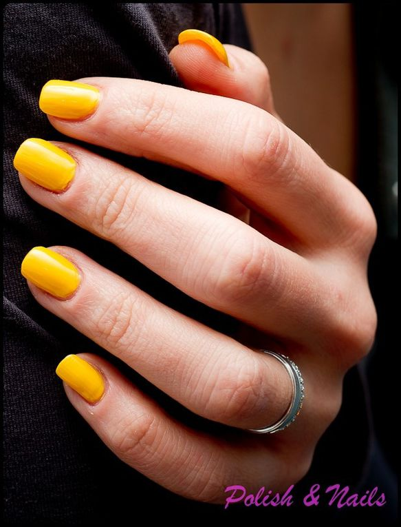 Album - swatch-jaune