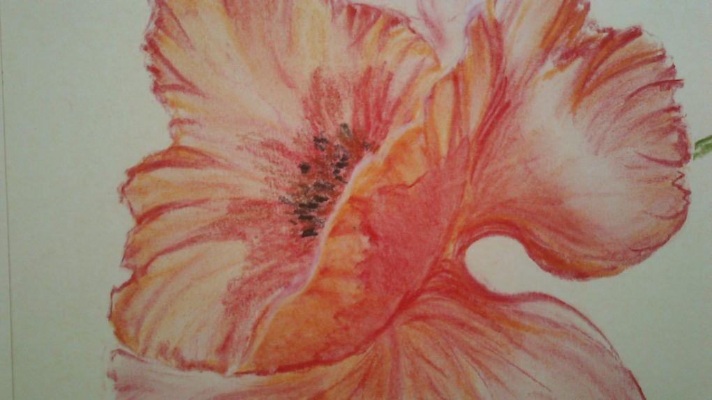 Album - Pastels