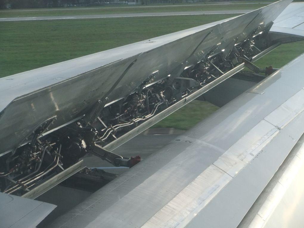 L'aile en vol: un organe vivant de votre voyage.