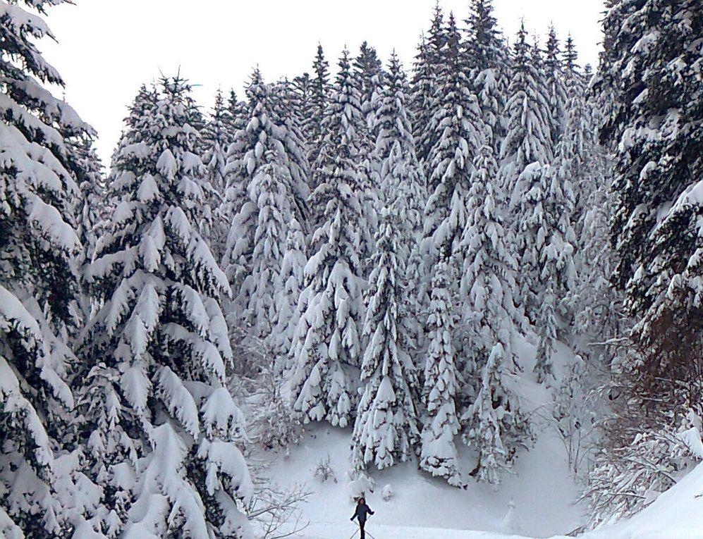 Album - cantal-hiver