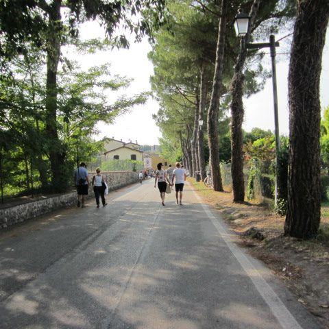 Uno dei borghi più caratteristici e suggestivi d'Italia. Frazione di Valeggio sul Mincio in provincia di Verona, a due passi dal lago di Garda.