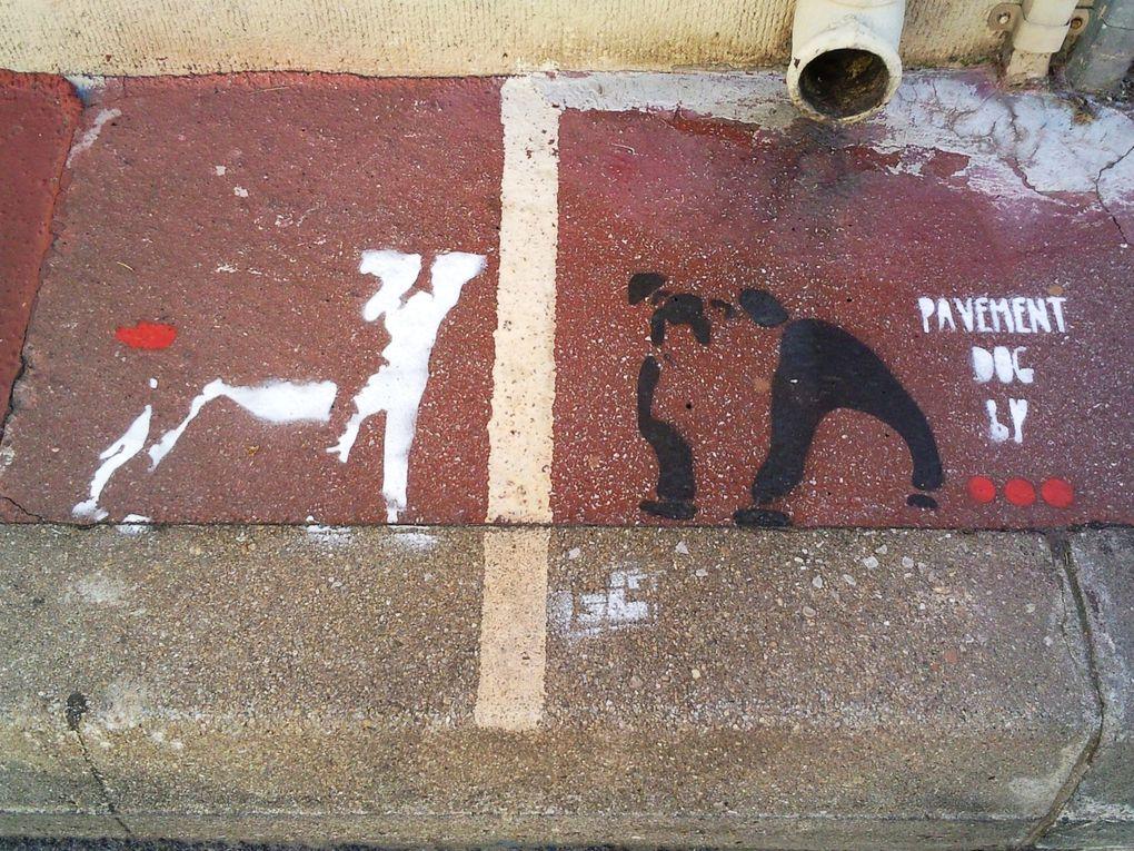 En recherche d'infos sur ce pocheur des trottoirs (surtout sur Beaux-Arts)