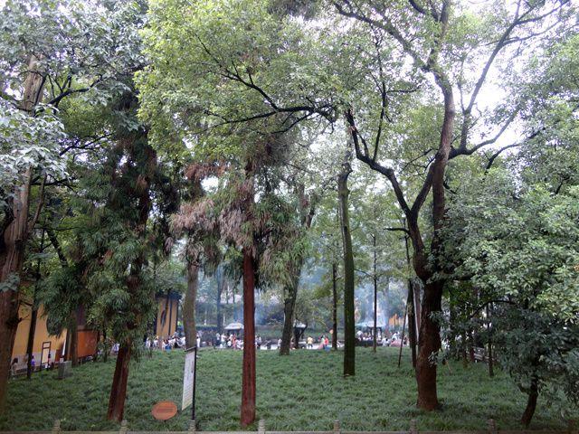 Album - Zhejiang