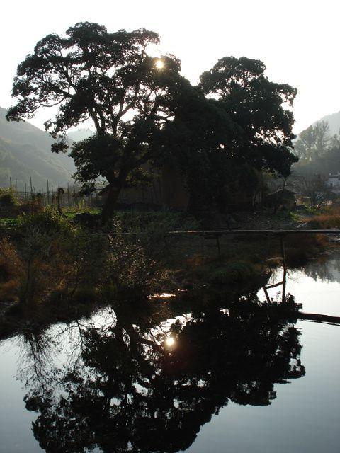 Wuyuan, une place à part dans le Jiangxi, cela mérite un album : l'endroit idéal pour les randonnées et le camping, un ensembles de montagnes magnifiques !
