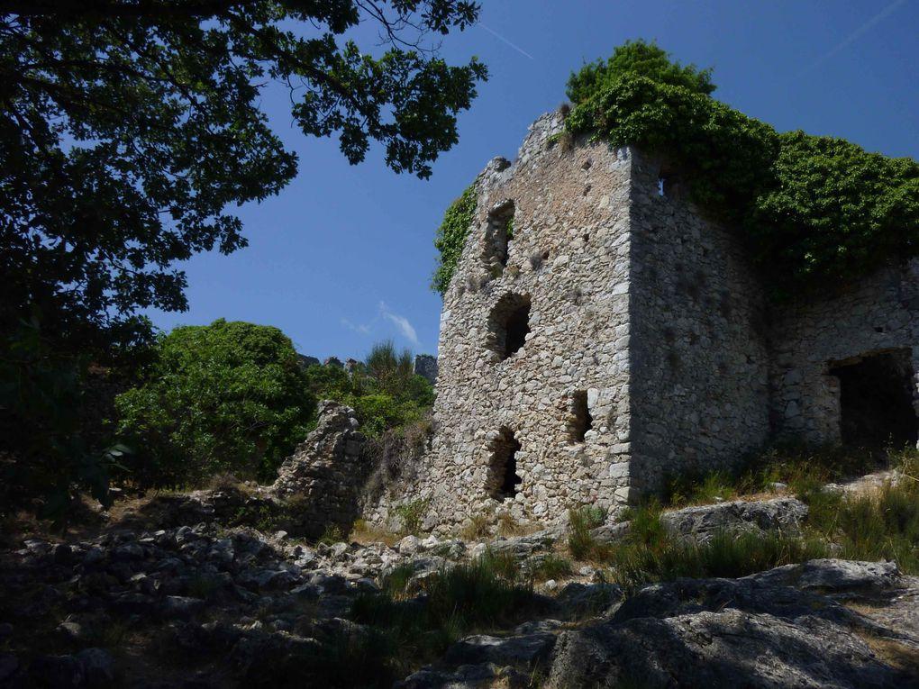 Le 14 août 2012, une balade avec Lucy dans les ruines de Châteauneuf-Villevieille.