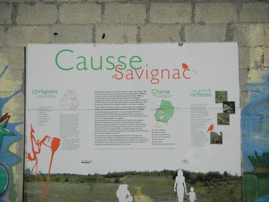 Album - Les-Causses-de-Savignac - Le Fitness