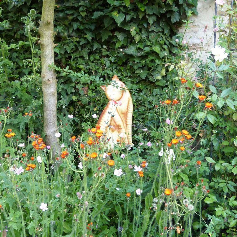 Album - fantaisies de jardin