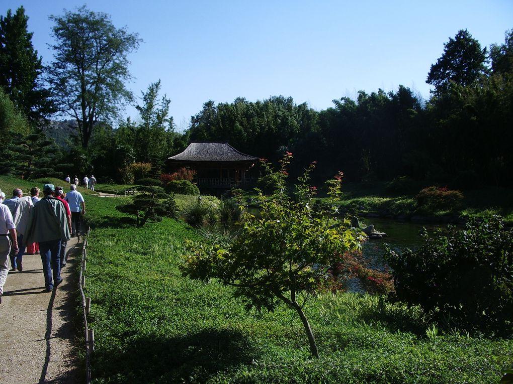 balade au milieu de 12 hectares de bambous et de magnifiques paysages