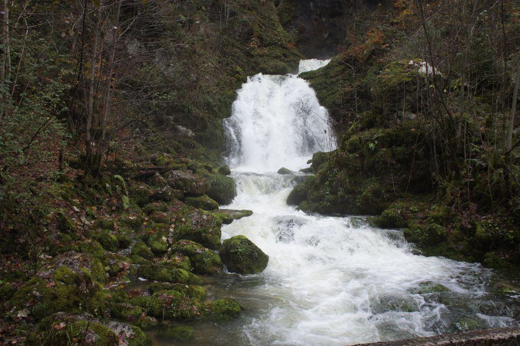 Album - Les-Rousses-Morbier-Jura en quelques photos