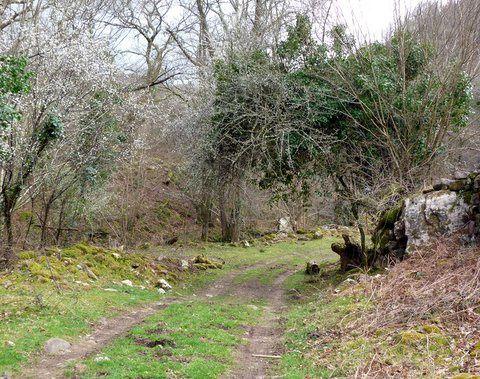 Randonnée au village abandonnée bidarray
