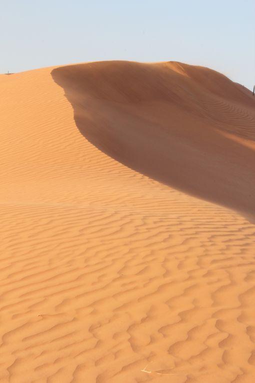 Dubai &amp&#x3B; Les Emirats Arabes Unis